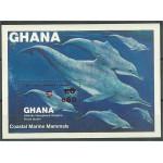Ghana block 107 **
