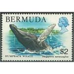 Bermuda 366 **