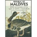 Maldiverna block 126 **