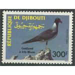 Djibouti 579 **