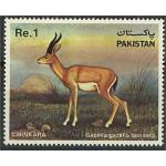 Pakistan 588 **