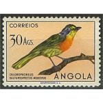 Angola 360 **