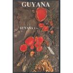 Guyana block 37 **