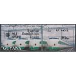 Guyana block 135 **