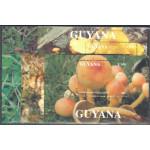 Guyana block 269-273 **