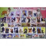 100 olika hundar