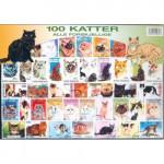 100 olika katter